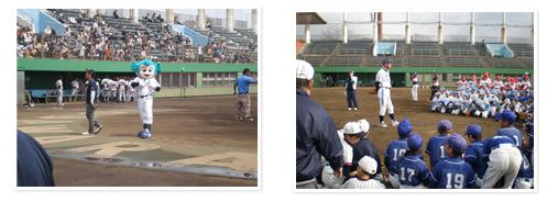 施設概要 | 上府中公園小田原球場