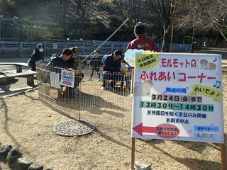 20170117ふれあい (1).JPG