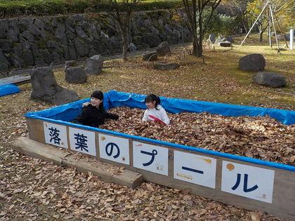 20171119落葉のプール (2).JPG