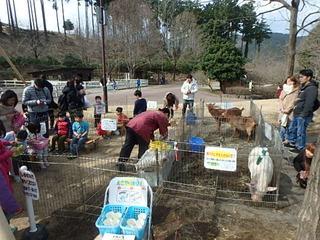 20170226ふれあい動物園 (5).JPG