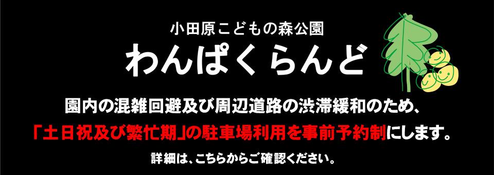 市 者 感染 小田原 コロナ